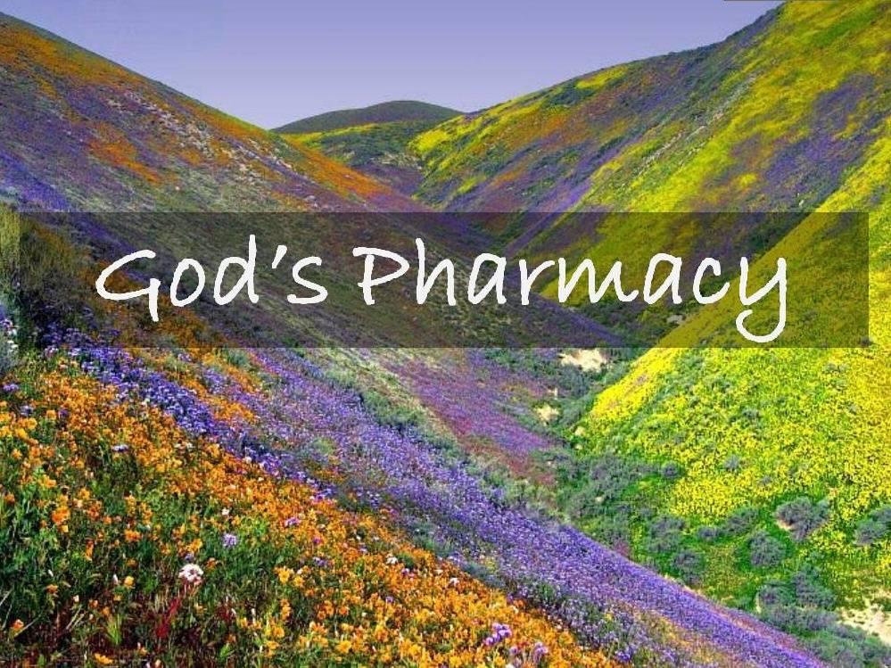 God s pharmacy recis dempayos for God s garden pharmacy