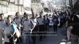 adivay-2012-civic-parade-2